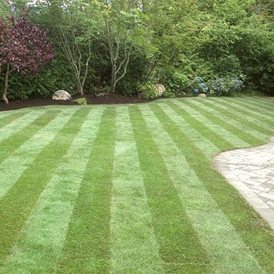 Wake Up Your Lawn for Spring