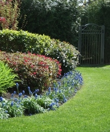 Lawn-Garden-Care