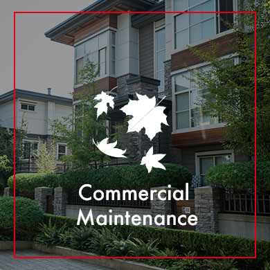 Commercial Maintenance gallery thumbnail