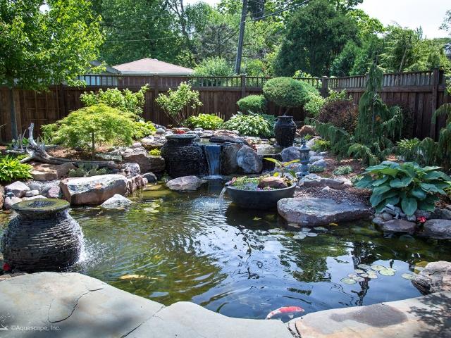 Ecosystem Pond 13