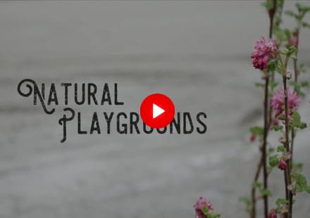 Want to install a natural playground at your school or home? We have the team that can make this dream come to reality. From the initial design and concept to implementation of the natural garden installed we can make it happen. Call 604-924-5296 or email info@gclc.ca today.