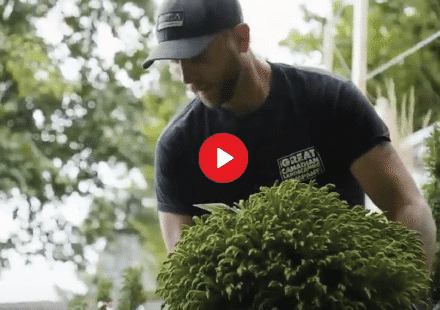 At Great Canadian Landscaping Company, we offer a large variety of landscape installation as well as construction services. Whether it be carpentry, hardscape, softscape, new lawns, putting greens, synthetic turf, irrigation, lighting, and retaining walls. We do it all!